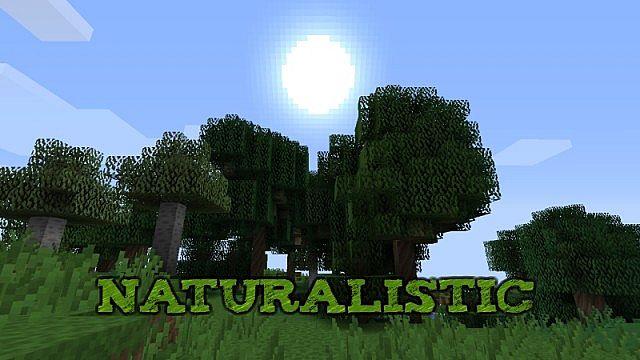 https://img3.9minecraft.net/TexturePack/Naturalistic-texture-pack.jpg